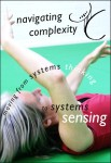 navigating complexity poster