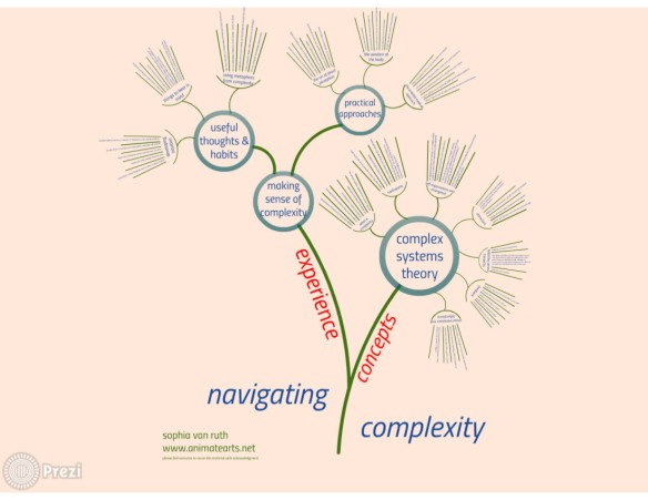 navigating complexity prezi image
